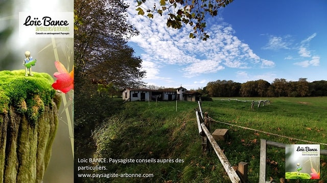 Paysagiste-Ahetze-Loic-BANCE-Paysagiste-conseil