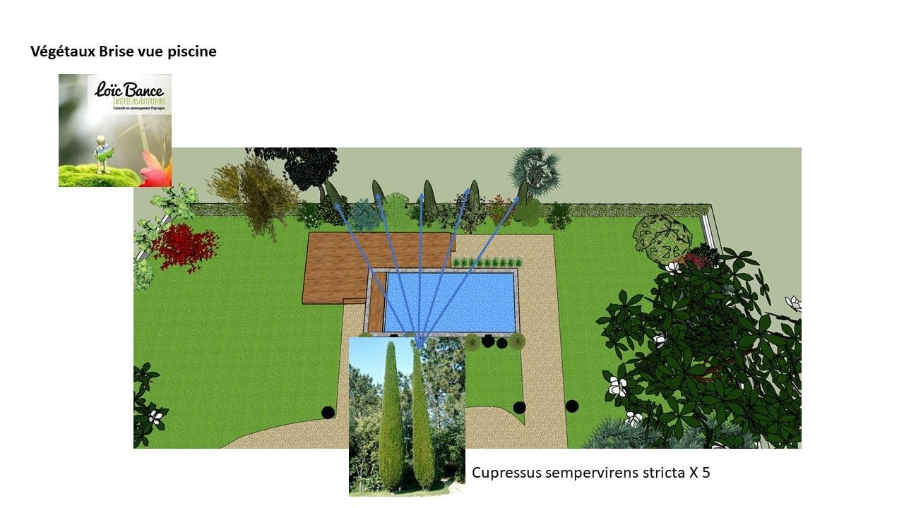 Paysagiste-Bayonne-piscine-création cheminement-et-zone-de-vie-24