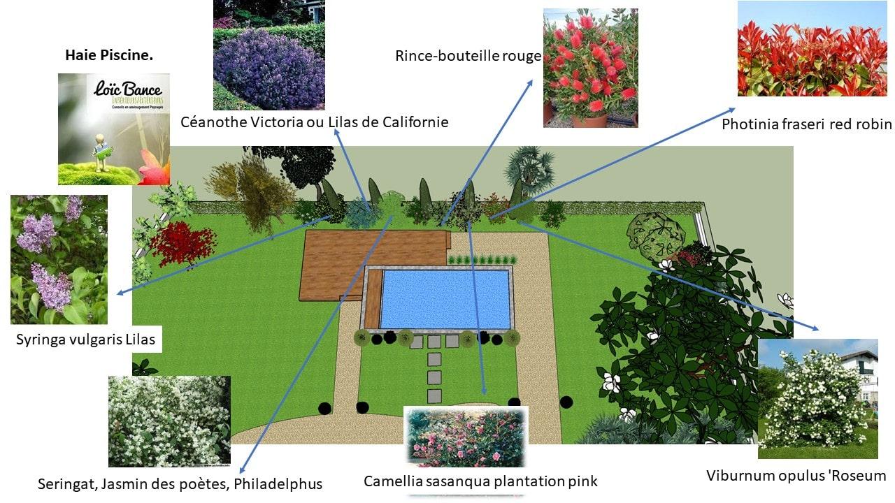 Paysagiste-Bayonne-piscine-création cheminement-et-zone-de-vie-26