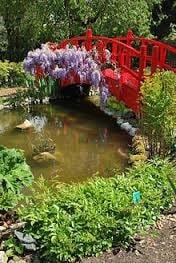 Jardin-Japonais-Paysagiste-pays-basque